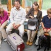 Pet ownership New Zealand research