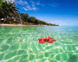 Fiji – Post Fiji