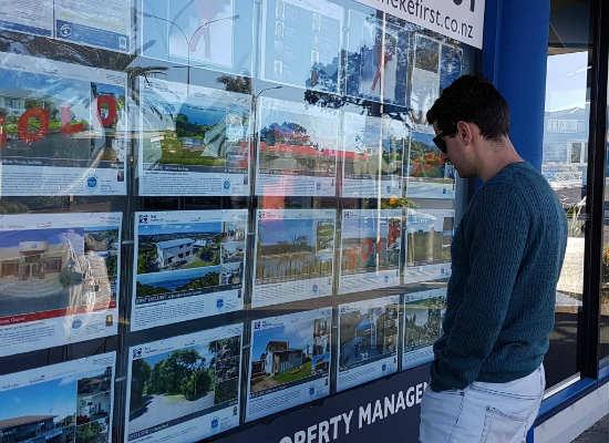 Real Estate Window 2
